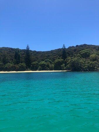 Bay of Islands Cruise & Island Tour - Snorkel, Hike, Swim, Paddleboard, Wildlife: no crowds!