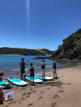 Bay of Islands Cruise & Island Tour - Snorkel, Hike, Swim, Paddleboard, Wildlife: paddle board instruction
