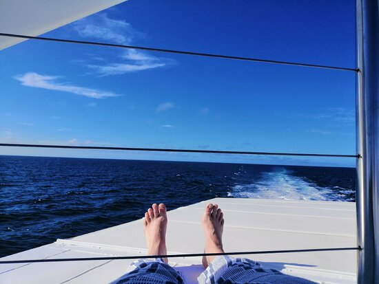 Lady Musgrave Day Trip from Bundaberg Including Snorkeling, Glass Bottom Tour and Guided Island Walk Photo