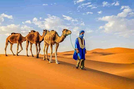 Marrakech, Morocco: Africa north journeys