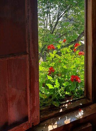Tudo que é mais lindo encontra semelhança com uma janela florida!
