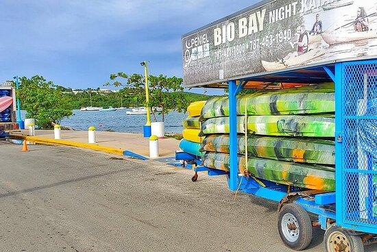 Small-Group Tour of Fajardo and Bio-Bay Kayak Adventure