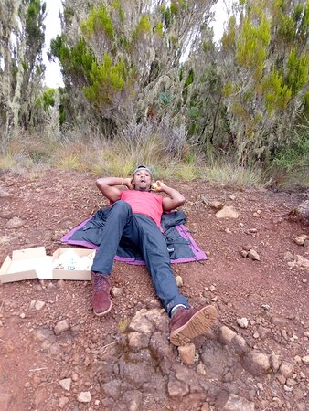 Mountain Kilimanjaro Day Hike: Crater point!!!!Tired!!!