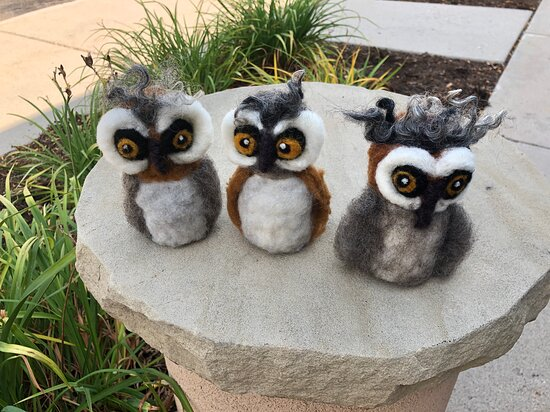 Fort Collins, CO: Fun wool felted owls by Judy S