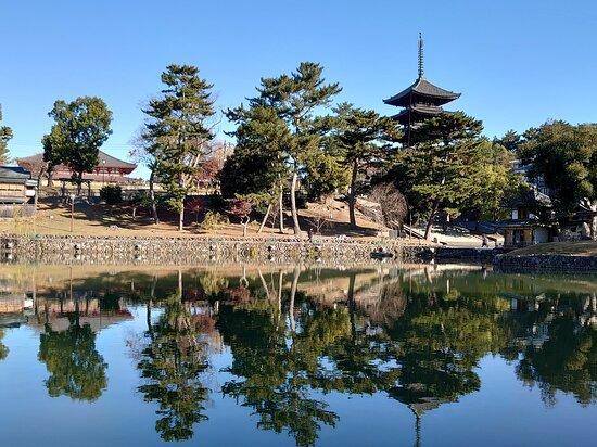 五重の塔と再建された中金堂