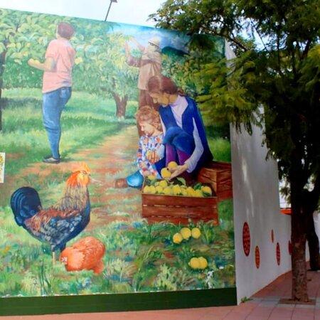 Wonderful murals