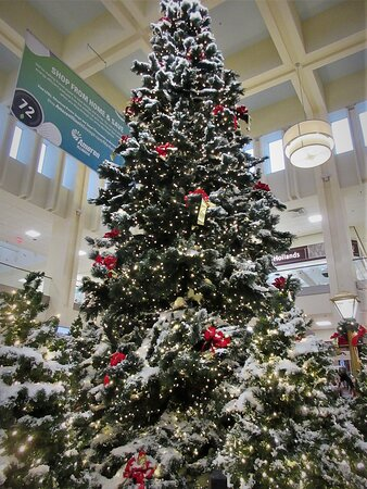 Northwoods Mall: Merry Christmas & Happy Holidays to All!  2200 W War Memorial Dr, Peoria IL, December 2020
