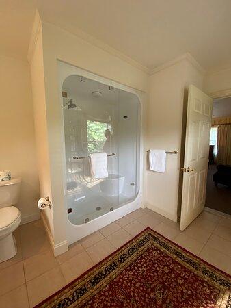 Steam shower in Monroe Suite