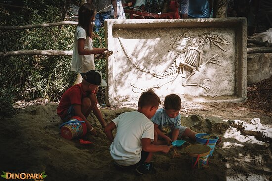 Become a real paleontologist for one day! 🦖😊 Everything is possible in #dinoparkfuntana
