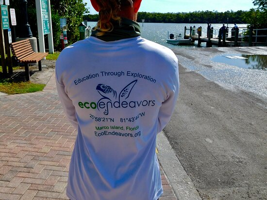 Ten Thousand Islands Boat Tour: Tours are,covered!