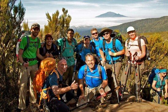 Wildlife Safari/Kilimanjaro climb