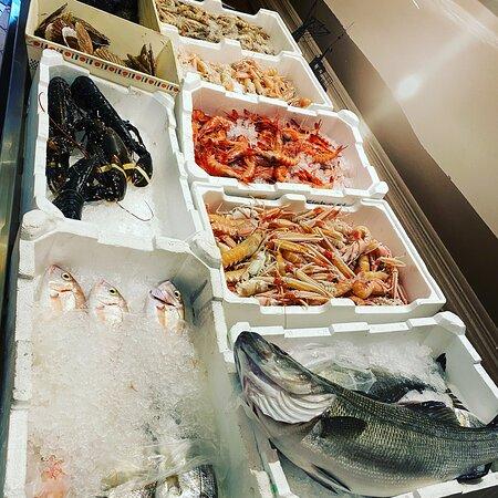mostra del pesce