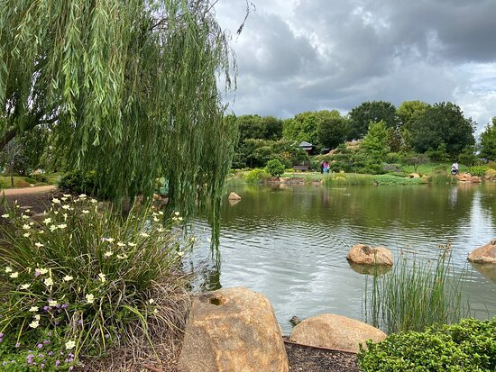 Dubbo Regional Botanic Gardens Adventure Playground
