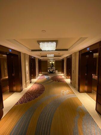 Guest floor.