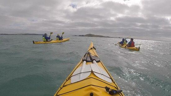 Half day kayak tour to Motukorea island: Motukorea in our sights