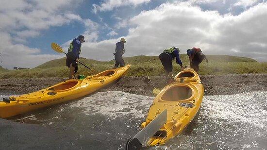 Half day kayak tour to Motukorea island: Time for a coffee.