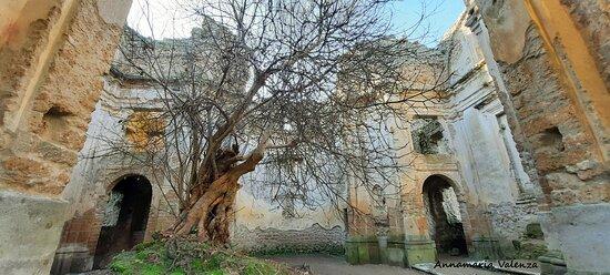 Canale Monterano, Italia: Interno della Chiesa di San Bonaventura
