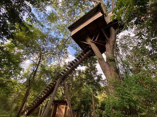 Sdau, Kambodsja: The treehouse!