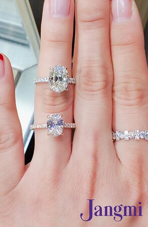 Oval cut diamonds on our love fancy with under halo pave.