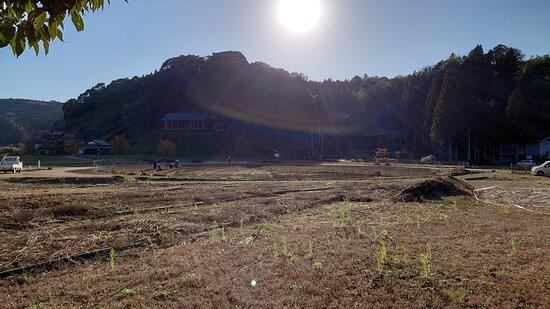 臼杵石仏公園