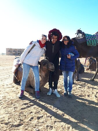 Tours with camels
