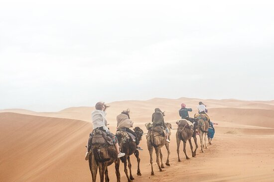 ‪Travel Link Morocco‬