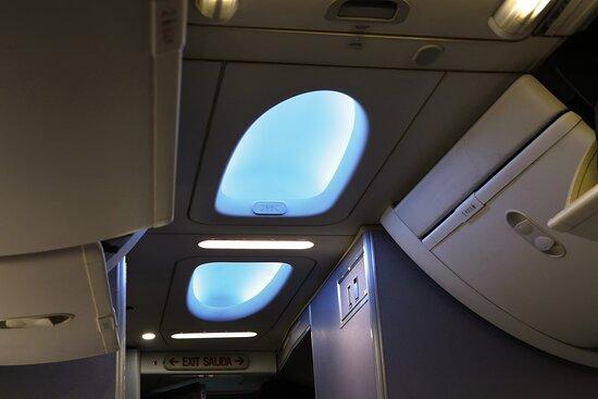 United Airlines : December - UA444 Phoenix to Washington/Dulles 737-900ER (#3473) FC Seats 3A & B - Ceiling
