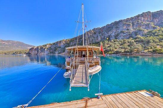 Phellos Boat