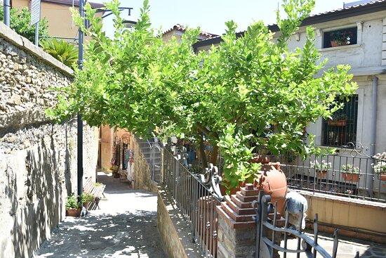 Кастеллабате, Италия: Stradina