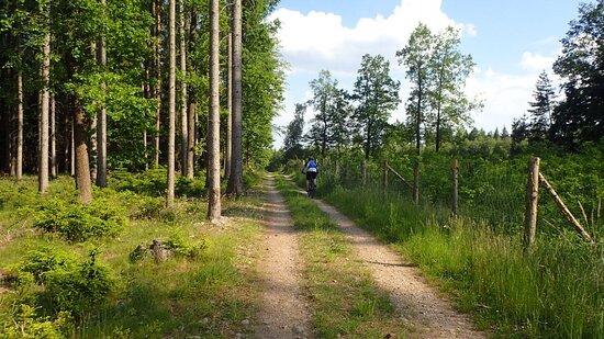 South Moravian Region, Czech Republic: Велопрогулка по Южной Чехии, Каменный Уезд.