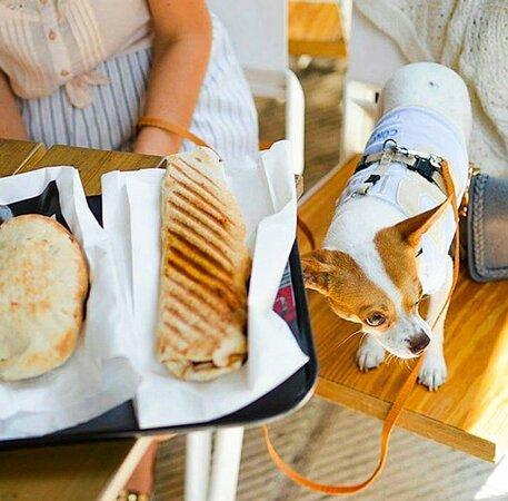 Κυπριακή ή αραβική; διαλέξτε την αγαπημένη σας πίτα και γεμίστε την με τις αγαπημένες σας γεύσεις!!
