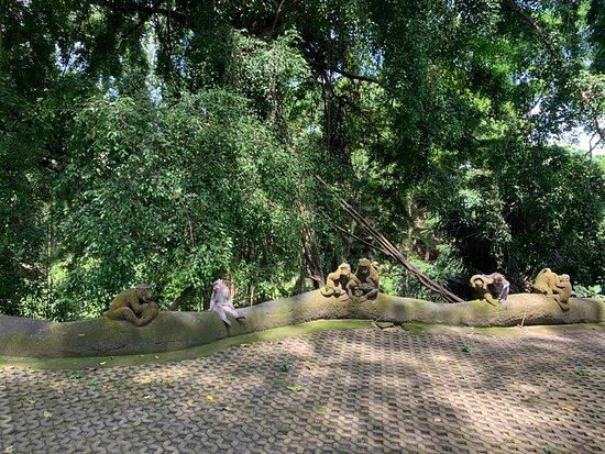Best of Ubud Tour with Jungle Swing: Monkey Forest
