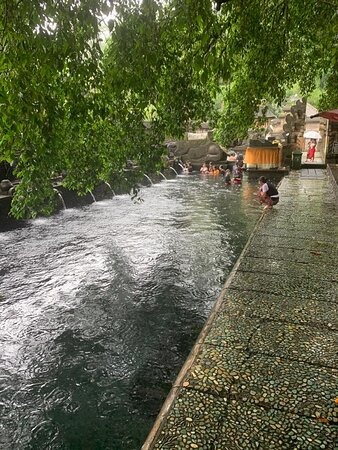 Best of Ubud Tour with Jungle Swing: Temple Water Blessing