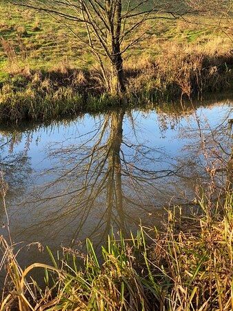 Cromford Canal, Derbyshire: canal vista
