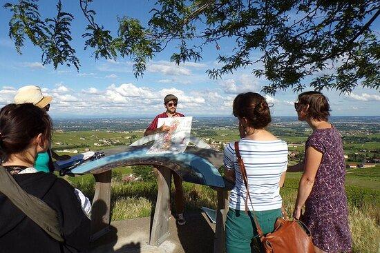 Visita guidata del Beaujolais - Partenza da Mâcon