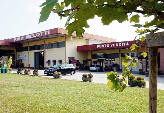 Riso Melotti - Azienda Agricola