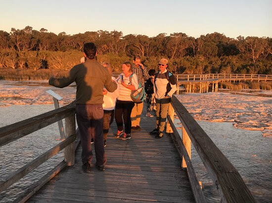The history lesson at Lake Clifton Thrombolites tour was exceptional!