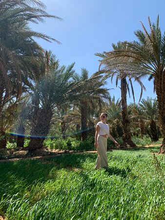3 days desert tour From Marrakech to Fes: Jungle