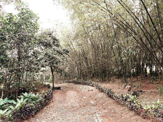 Capiz Eco Park