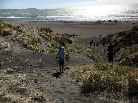 Kawhia, New Zealand: beach 3