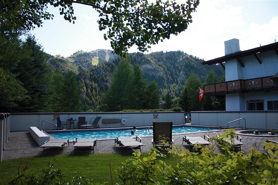 View from our Outdoor Pool Area!