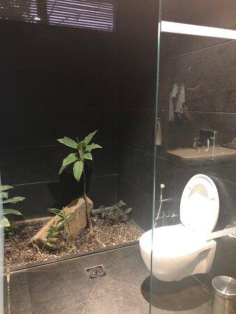 Toilet Block - Lake View Room