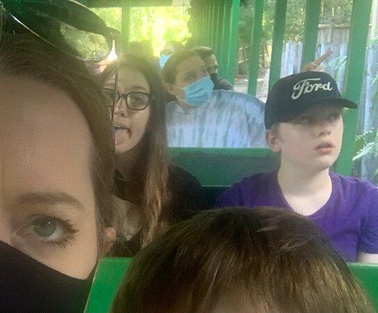 busch gardens tampa bay - Busch Gardens Tampa Horario De Funcionamento