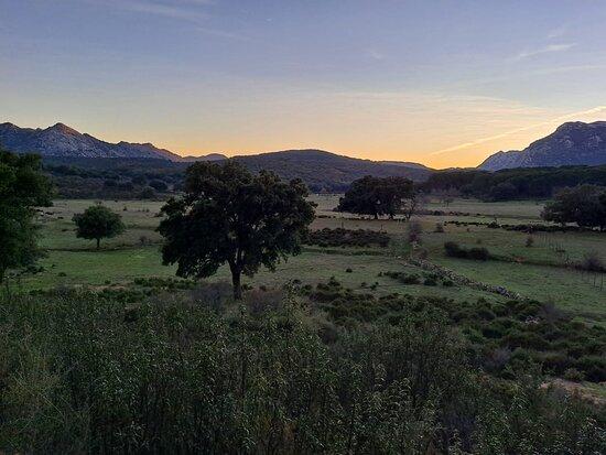 Sierra de Grazalema Natural Park Resmi