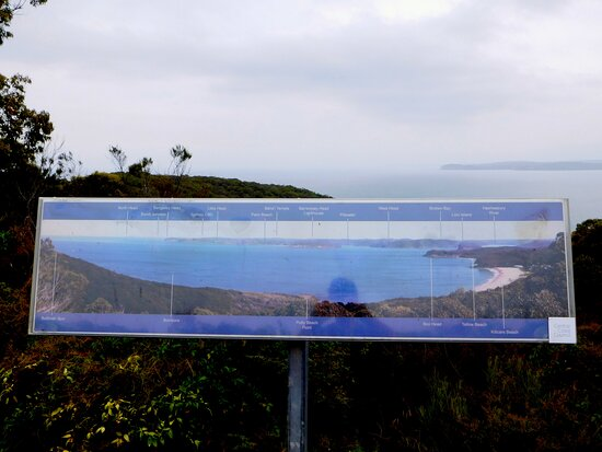 Marie Byles Lookout