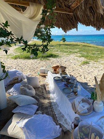 Paradise Picnic Aruba