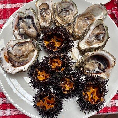 Huîtres & Oursins