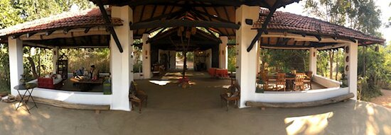 One of the best Jungle Lodge experiences with Homestay feeling