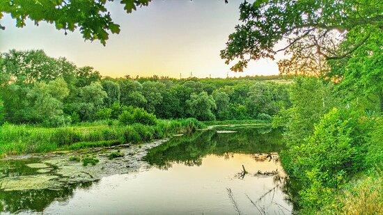 Trail blaze on the banks of Severskiy Donets river