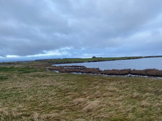 County Clare, Ireland: New Years Day walk